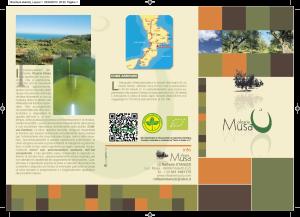 Brochure Olearia musa-1