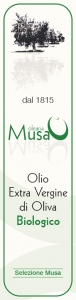 Olearia Musa-1